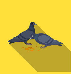 pigeonold age single icon in flat style vector image