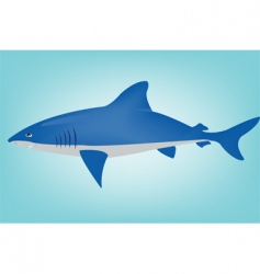 Shark in ocean vector