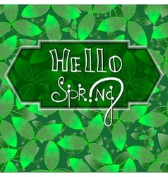 Hello spring green background with leaves eps10 vector