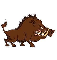 Cartoon angry boar bares ones teeth vector