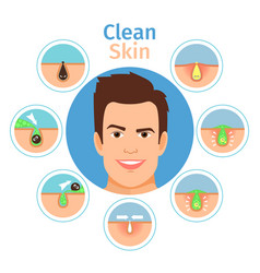 Male facial clean skin vector