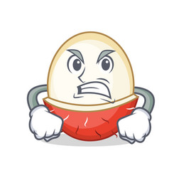 Angry rambutan mascot cartoon style vector
