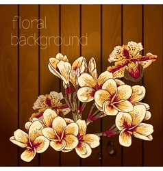Beautiful flowers on a wooden texture vector image