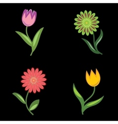 Flower icons set chamomile tulip floral vector