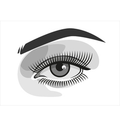 Realistic woman eye with makeup graphics vector