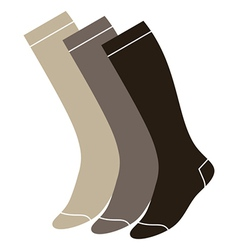 Set of long socks vector