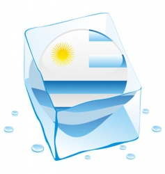 Uruguay flag vector image vector image