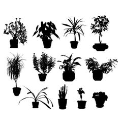 Silhouette of different potted plants vector