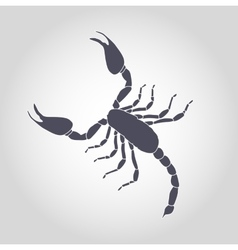 Scorpion Silhouette Icon vector image