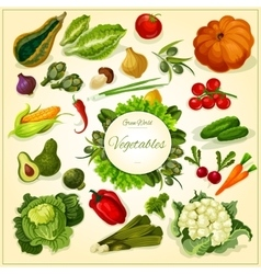 Fresh vegetable poster for food design vector