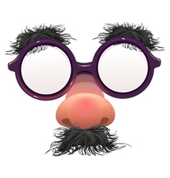 Funny glasses nose surface nose and glasses vector