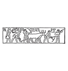 Early egyptian pictures or ancient egypt pictures vector