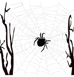 Realistic spider web with spider vector