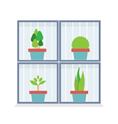 Flat design potted plants in the box vector