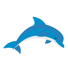 blue dolphin icon isolated vector image