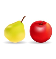 Green Pear and Red Apple Isolated on White vector image
