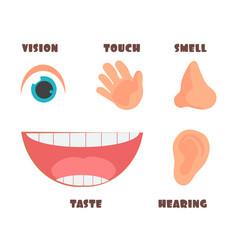 human senses cartoon icons with eye nose vector image