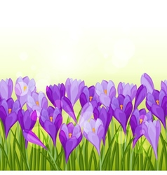 Spring flowers crocus seamless pattern horizontal vector