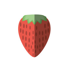 tasty strawberry fruit shadow vector image