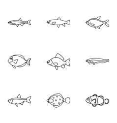 Species of fish icons set outline style vector