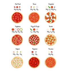 Pizza ingredients infographic poster vector