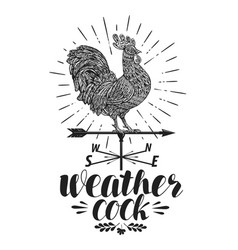 windvane weather vane label weathercock icon or vector image