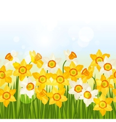 Spring flowers narcissus seamless pattern vector image