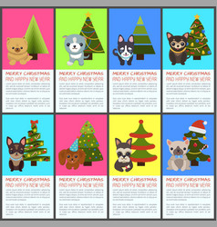 merry christmas and happy new year pets and spruce vector image vector image