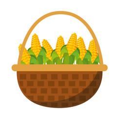 corns inside basket design vector image