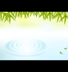 Water and bamboo leaves background vector
