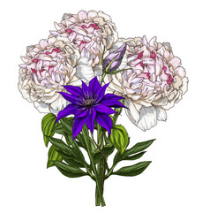 Hand drawn bouquet of peony and wild field flower vector