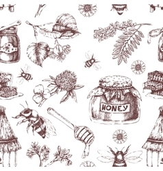 Honey Hand Drawn Seamless Pattern vector image vector image