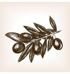 Olive branch hand drawn sketch style vector