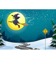 A witch floating with her broomstick vector image