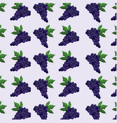 grape fruit seamless pattern vector image