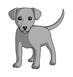 Puppy labradoranimals single icon in monochrome vector