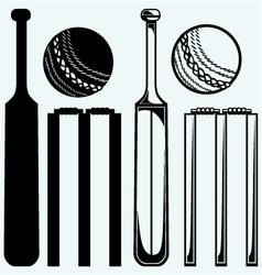 Set equipment for cricket vector image