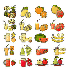 set of flat design cute colorful fruit vector image vector image