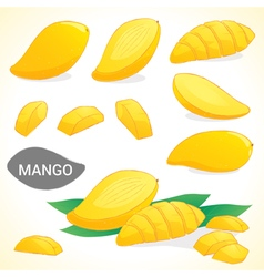 Set of mango in various styles vector image vector image