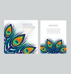 Set of creative multicolored letterhead template vector