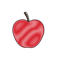 Draw apple juicy fruit food healthy vector