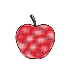 draw apple juicy fruit food healthy vector image