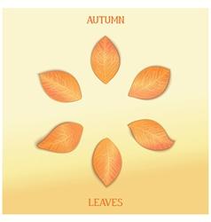 Set autumnal foliage vector