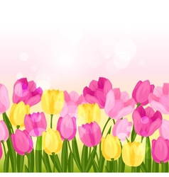 Spring flowers tulips seamless pattern horizontal vector image