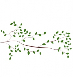 Tree branch vector