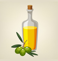 Bottle of olive oil with a branch of olives vector