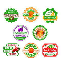 fruit labels for eco farm food and juice design vector image