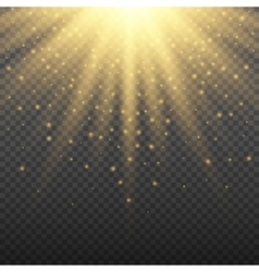 Gold glowing light burst explosion on transparent vector image vector image