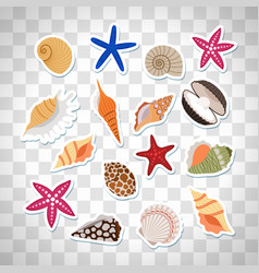 sea shells cute stickers vector image vector image
