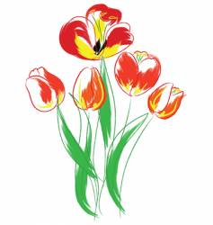 tulips bouquet vector image